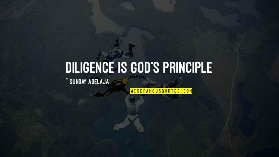 Erudity Quotes By Sunday Adelaja: Diligence is God's principle