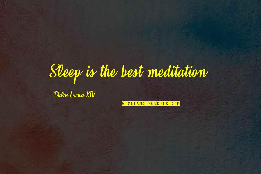 Escahtologizing Quotes By Dalai Lama XIV: Sleep is the best meditation.