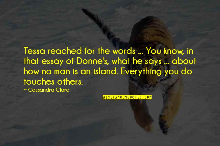 Essay Quotes By Cassandra Clare: Tessa reached for the words ... You know,