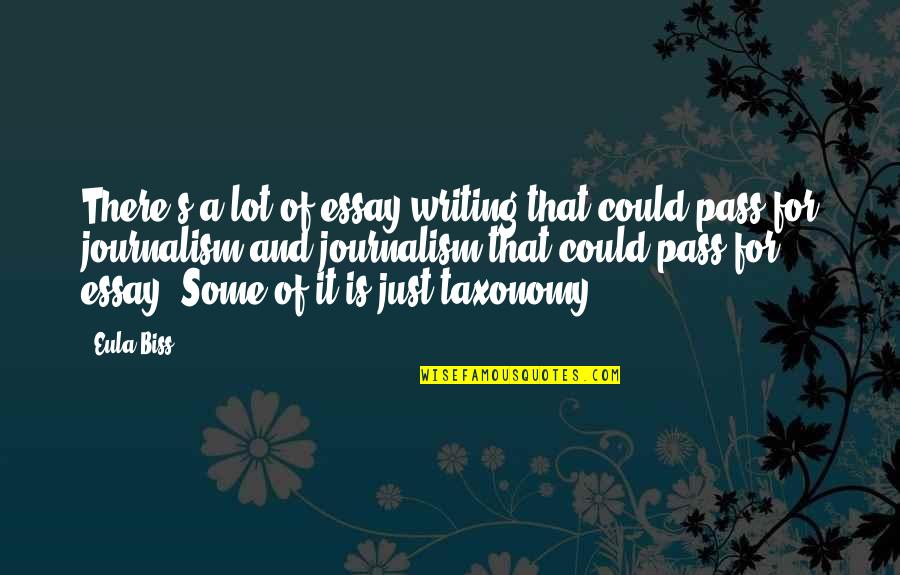 Essay Quotes By Eula Biss: There's a lot of essay writing that could