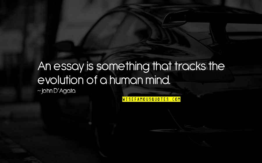 Essay Quotes By John D'Agata: An essay is something that tracks the evolution