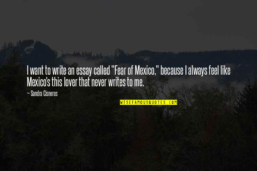 """Essay Quotes By Sandra Cisneros: I want to write an essay called """"Fear"""