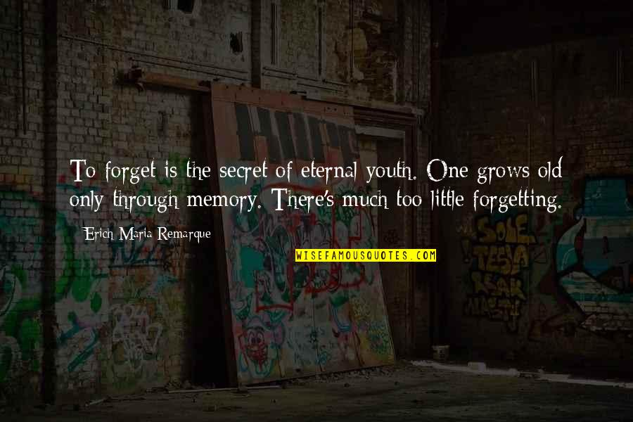 Eternal's Quotes By Erich Maria Remarque: To forget is the secret of eternal youth.