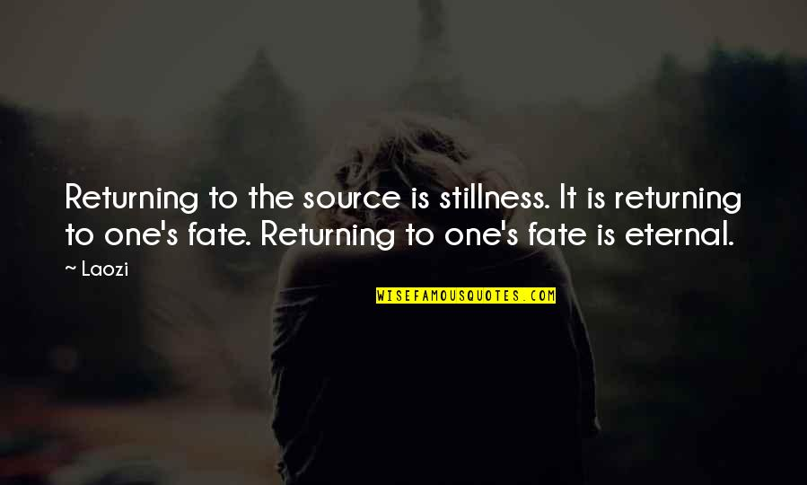 Eternal's Quotes By Laozi: Returning to the source is stillness. It is