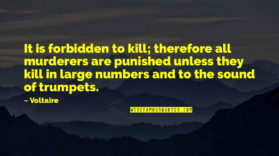 Ethics Humor Quotes By Voltaire: It is forbidden to kill; therefore all murderers