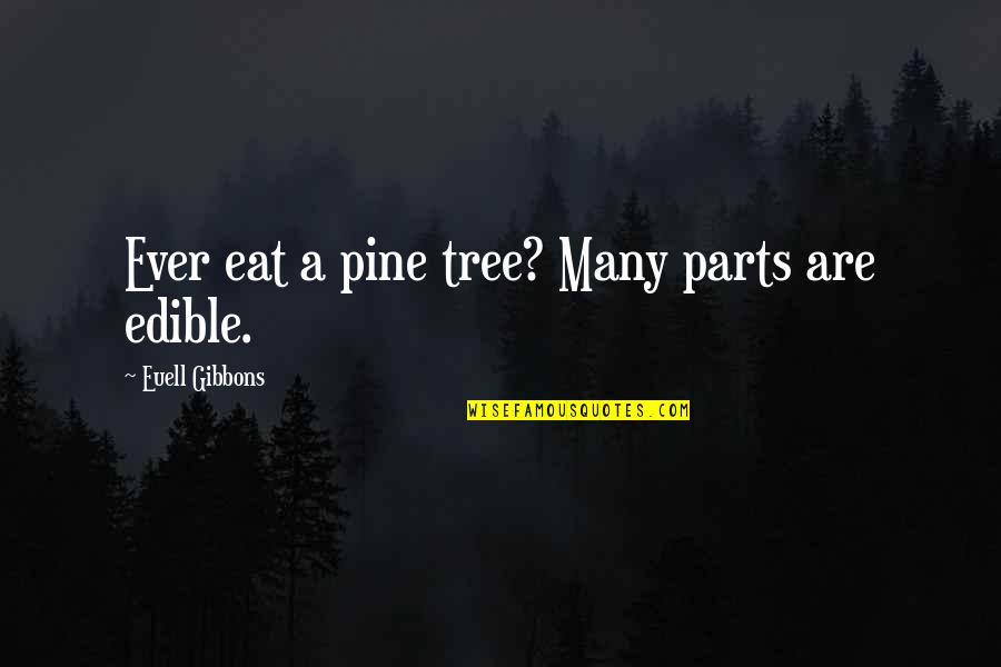 Euell Gibbons Quotes By Euell Gibbons: Ever eat a pine tree? Many parts are