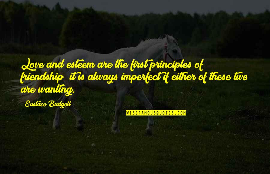 Eustace Quotes By Eustace Budgell: Love and esteem are the first principles of
