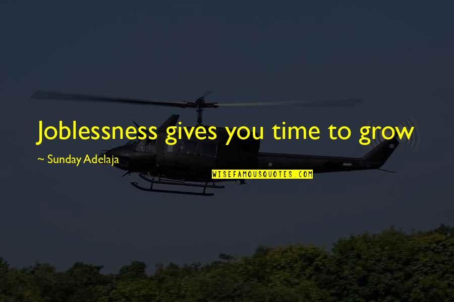 Evaluation's Quotes By Sunday Adelaja: Joblessness gives you time to grow