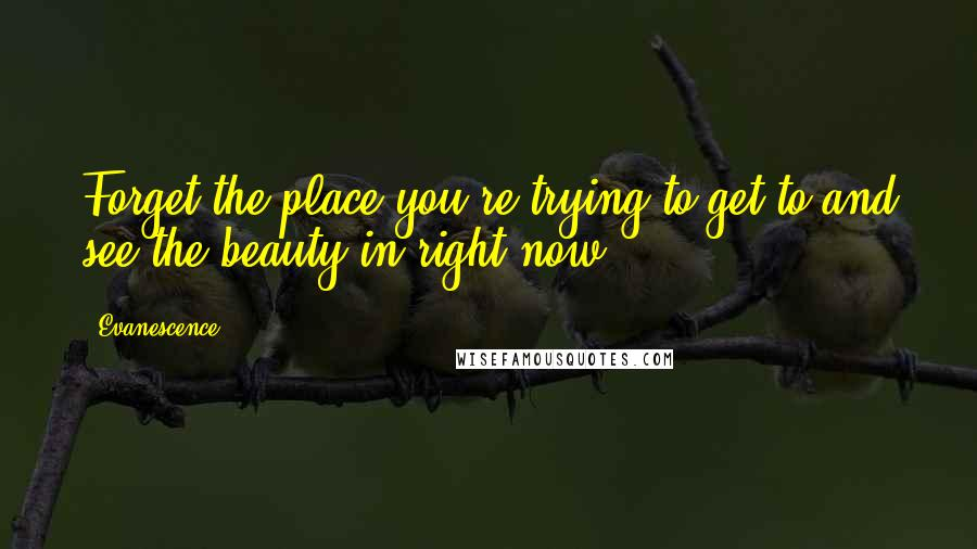 Evanescence quotes: Forget the place you're trying to get to and see the beauty in right now ...