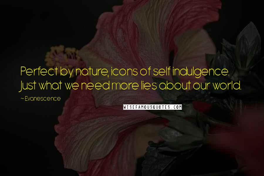 Evanescence quotes: Perfect by nature, icons of self indulgence. Just what we need more lies about our world.