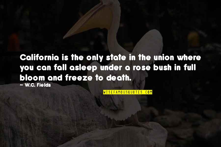 Even If I Fall Quotes By W.C. Fields: California is the only state in the union