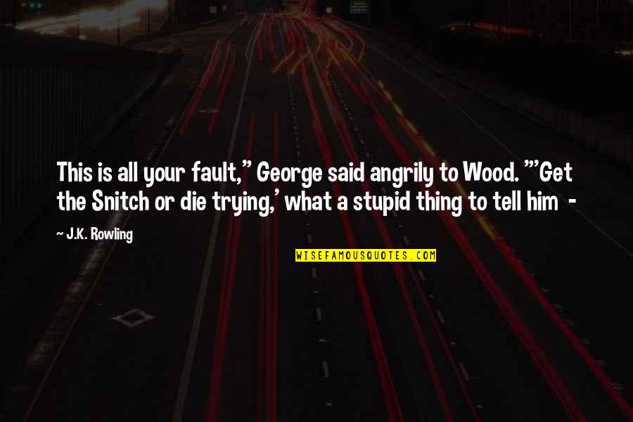 """Everyone Dying Quotes By J.K. Rowling: This is all your fault,"""" George said angrily"""