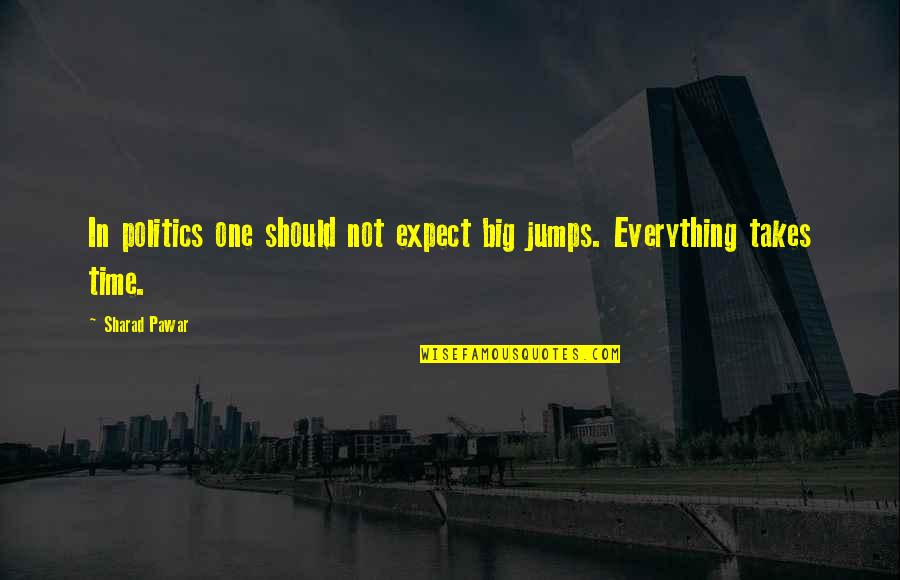 Everything Takes Time Quotes By Sharad Pawar: In politics one should not expect big jumps.