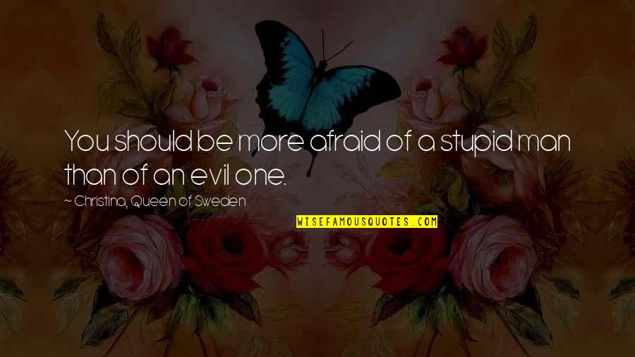 Evil Of Man Quotes By Christina, Queen Of Sweden: You should be more afraid of a stupid
