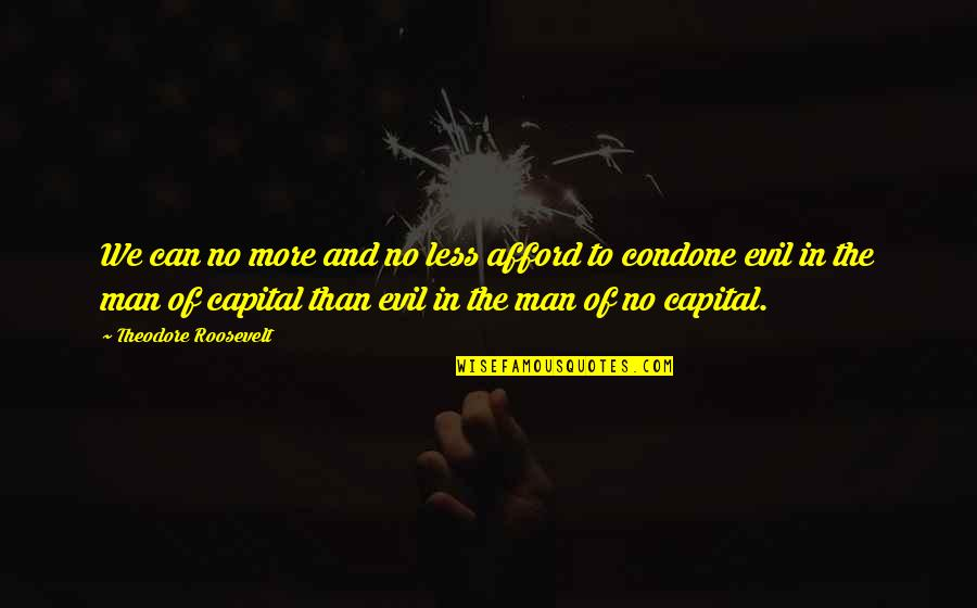Evil Of Man Quotes By Theodore Roosevelt: We can no more and no less afford