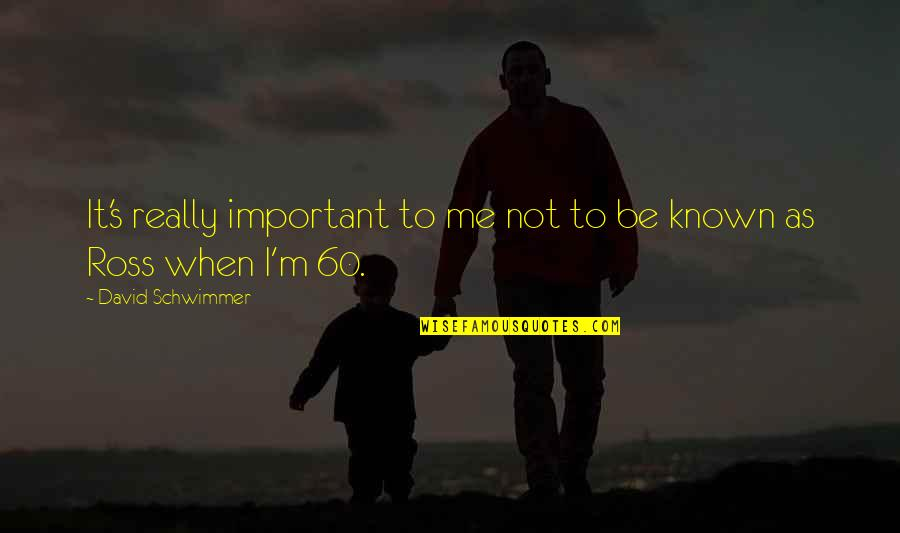 Exemplifies Quotes By David Schwimmer: It's really important to me not to be