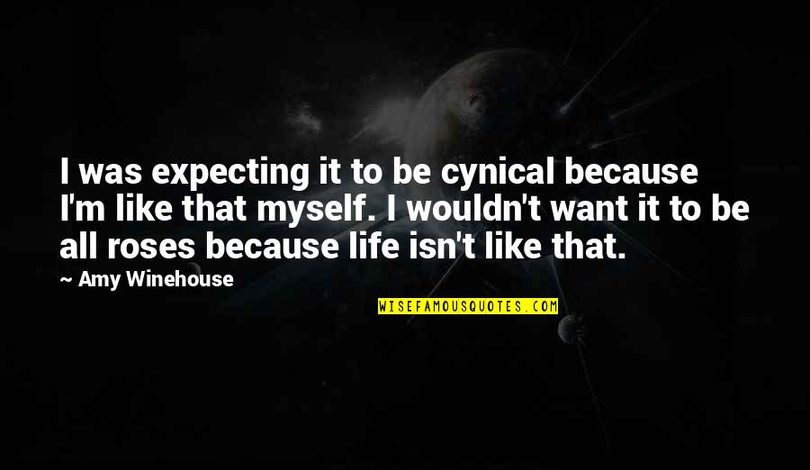 Expecting The Best Quotes By Amy Winehouse: I was expecting it to be cynical because