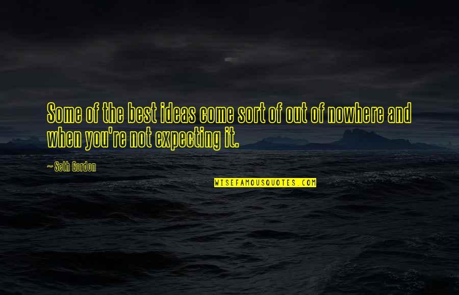 Expecting The Best Quotes By Seth Gordon: Some of the best ideas come sort of