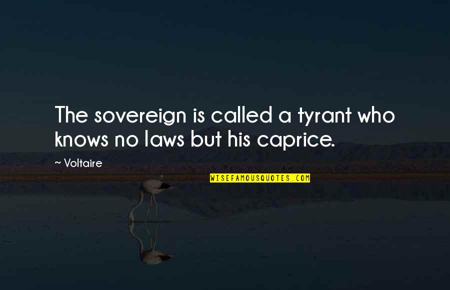 Experienc Quotes By Voltaire: The sovereign is called a tyrant who knows