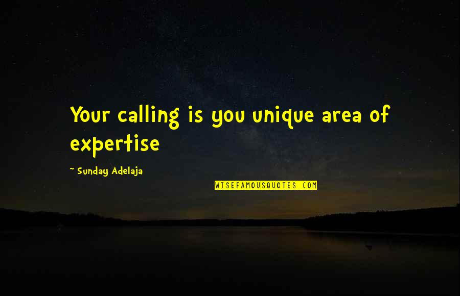 Expertise Quotes By Sunday Adelaja: Your calling is you unique area of expertise