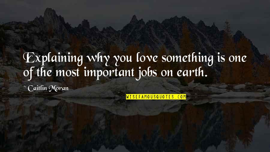 Explaining My Love Quotes By Caitlin Moran: Explaining why you love something is one of