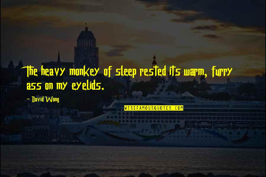 Eyelids Quotes By David Wong: The heavy monkey of sleep rested its warm,