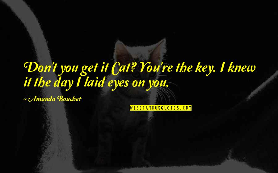 Eyes On Quotes By Amanda Bouchet: Don't you get it Cat? You're the key.