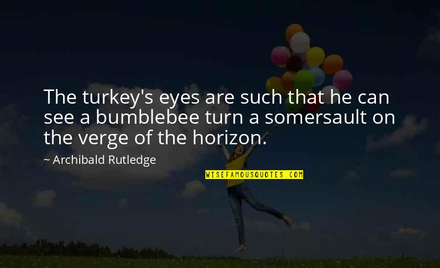 Eyes On Quotes By Archibald Rutledge: The turkey's eyes are such that he can