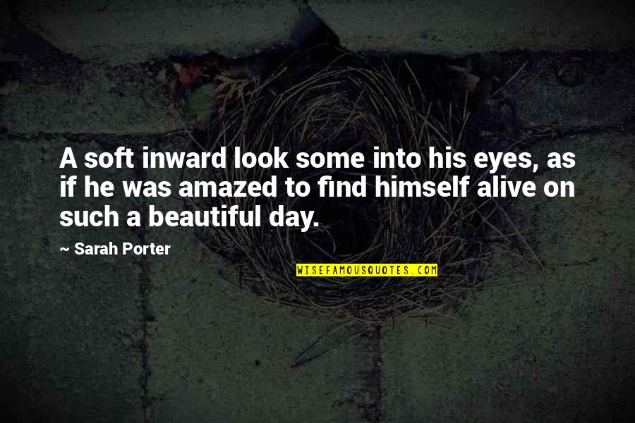 Eyes On Quotes By Sarah Porter: A soft inward look some into his eyes,