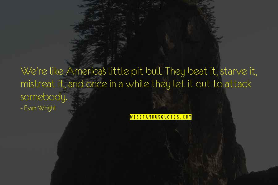 F L Wright Quotes By Evan Wright: We're like America's little pit bull. They beat