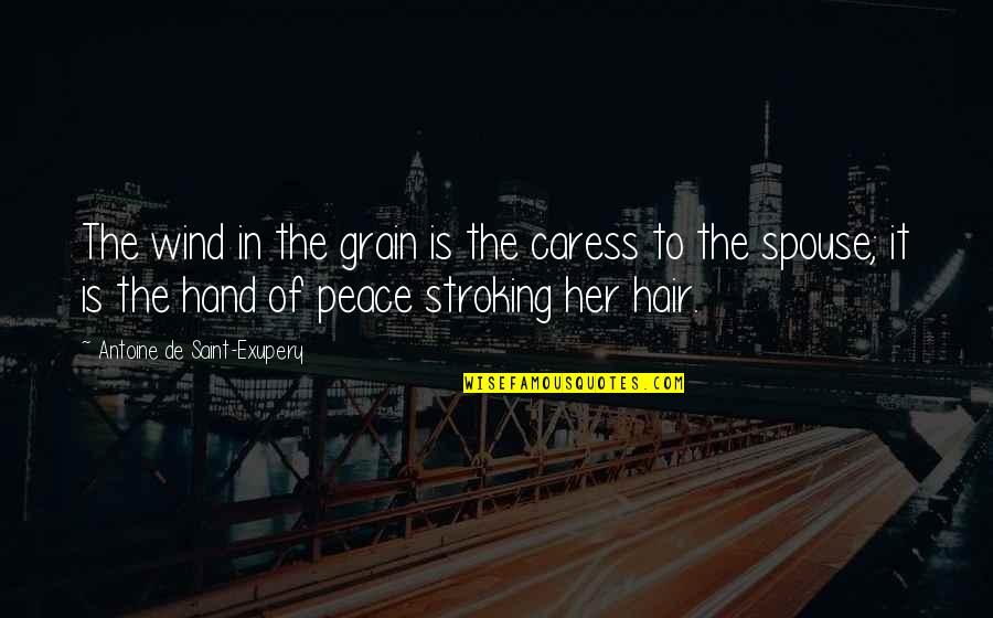 Fabricators Quotes By Antoine De Saint-Exupery: The wind in the grain is the caress