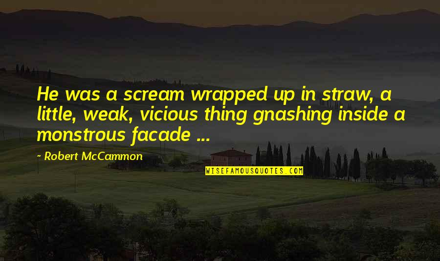 Facade Quotes By Robert McCammon: He was a scream wrapped up in straw,