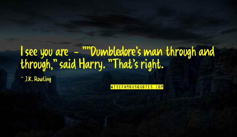 """Facebook Thuggin Quotes By J.K. Rowling: I see you are - """"""""Dumbledore's man through"""