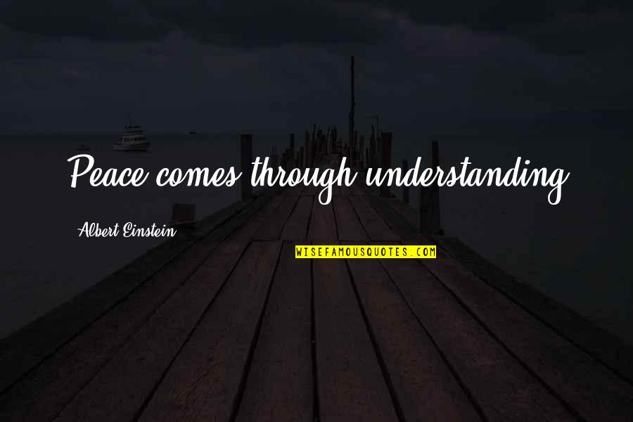 Facing Bad Times Quotes By Albert Einstein: Peace comes through understanding