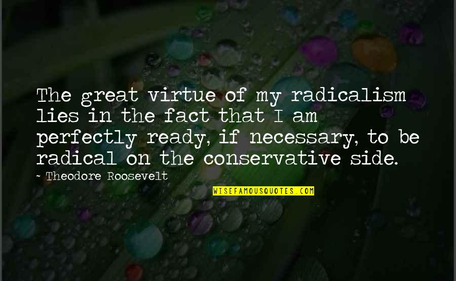 Facts And Lies Quotes By Theodore Roosevelt: The great virtue of my radicalism lies in