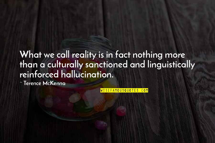 Facts And Reality Quotes By Terence McKenna: What we call reality is in fact nothing