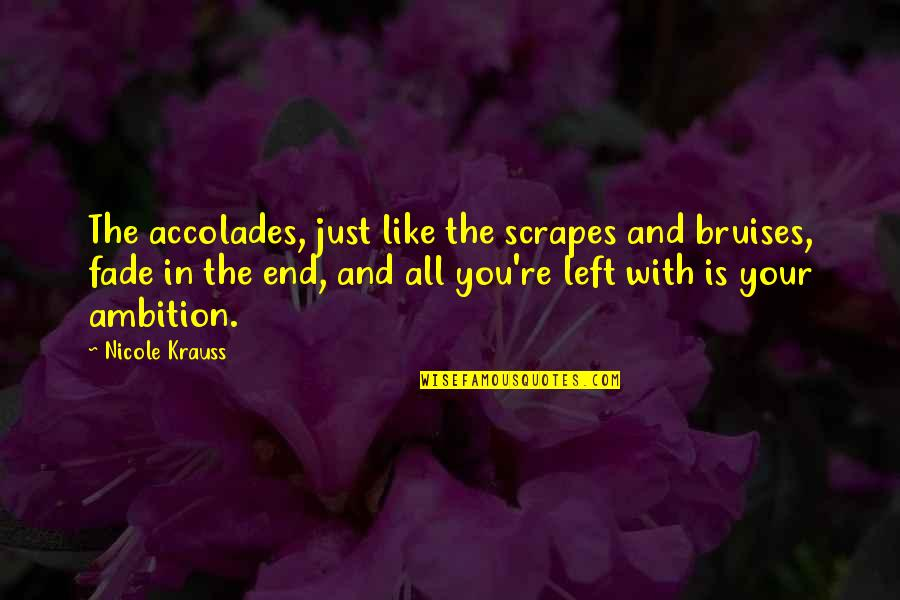 Fade Up Quotes By Nicole Krauss: The accolades, just like the scrapes and bruises,