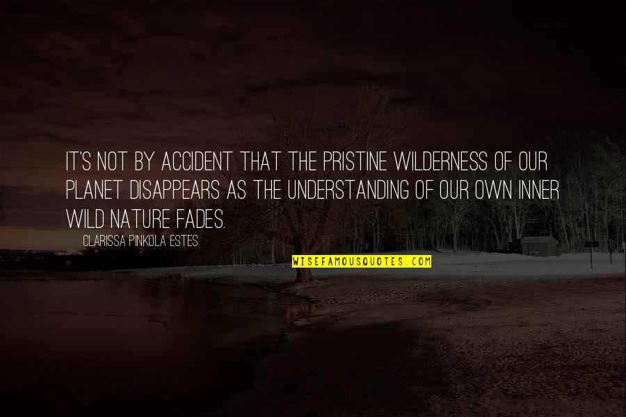 Fades Quotes By Clarissa Pinkola Estes: It's not by accident that the pristine wilderness