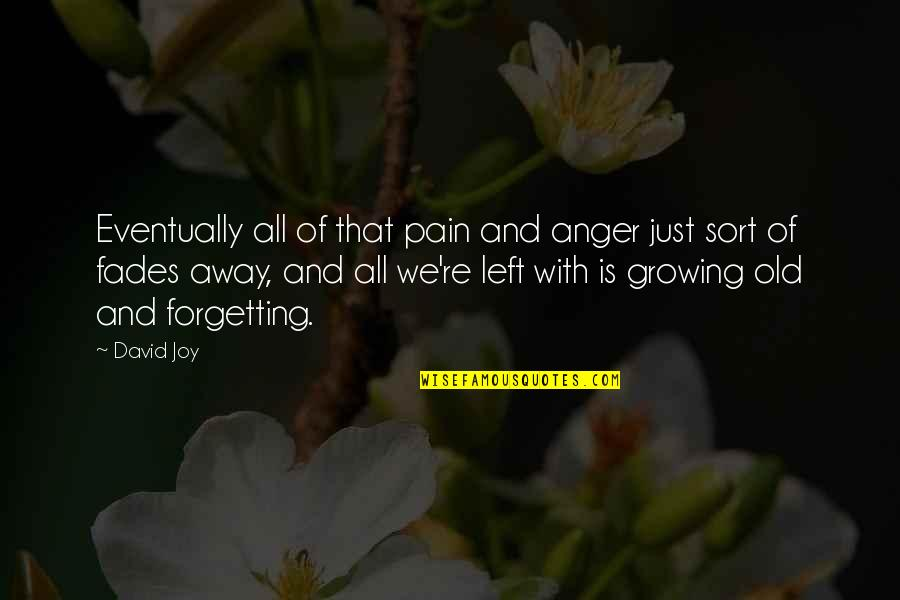 Fades Quotes By David Joy: Eventually all of that pain and anger just