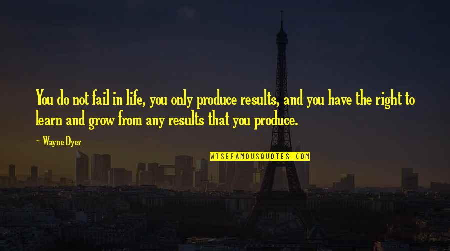 Failing In Life Quotes By Wayne Dyer: You do not fail in life, you only