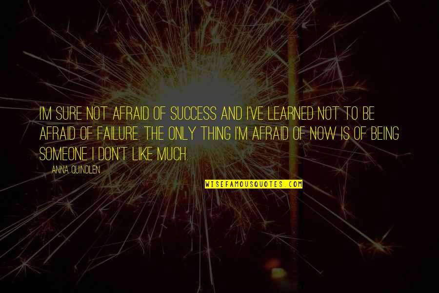 Failure Being Success Quotes By Anna Quindlen: I'm sure not afraid of success and I've