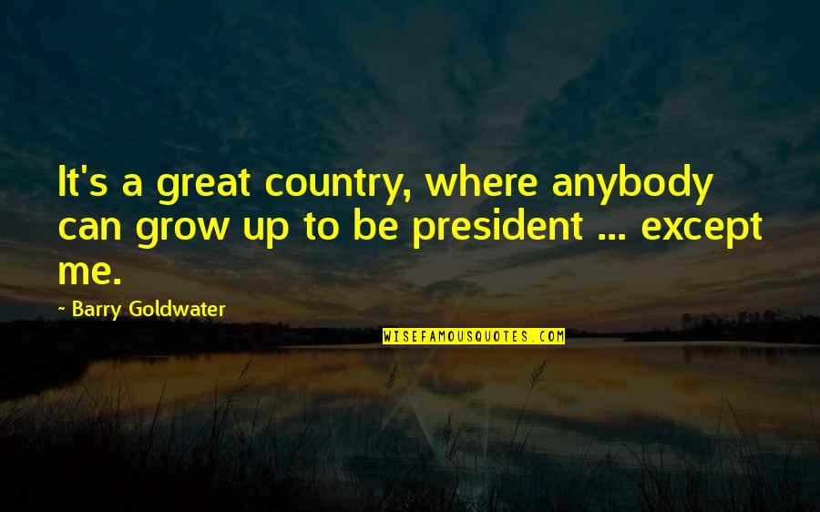 Failure Leading To Success Quotes By Barry Goldwater: It's a great country, where anybody can grow