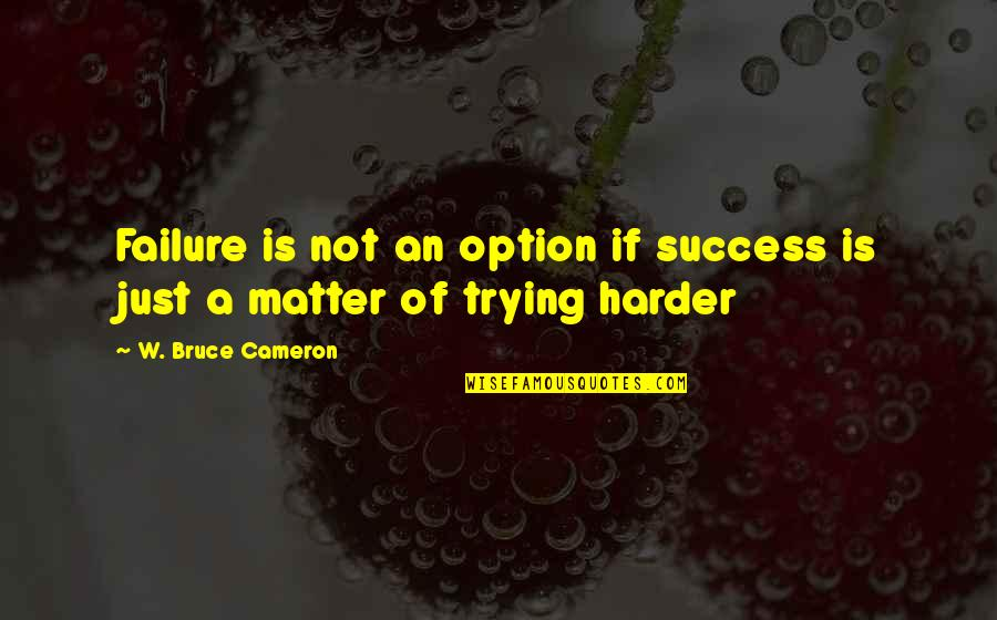 Failure Without Trying Quotes By W. Bruce Cameron: Failure is not an option if success is