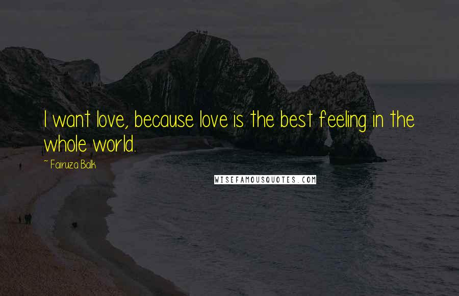 Fairuza Balk quotes: I want love, because love is the best feeling in the whole world.