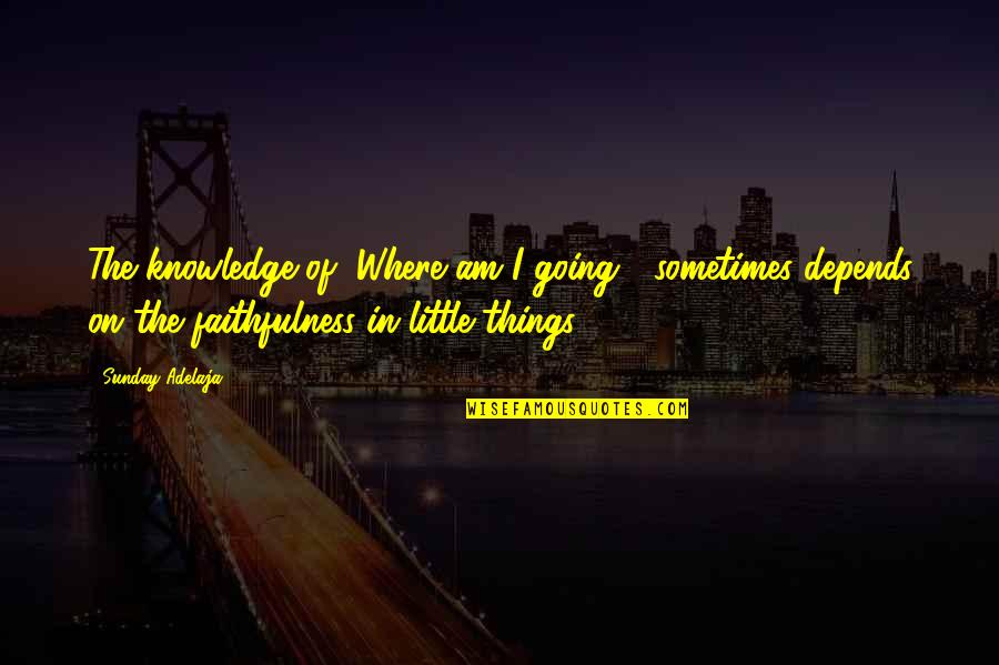 "Faithfulness Of God Quotes By Sunday Adelaja: The knowledge of ""Where am I going?"" sometimes"