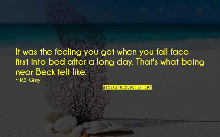 Fall Into Quotes By R.S. Grey: It was the feeling you get when you
