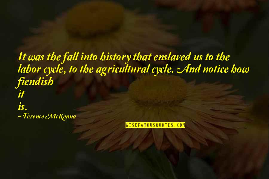 Fall Into Quotes By Terence McKenna: It was the fall into history that enslaved