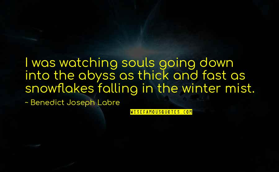 Falling For You Fast Quotes By Benedict Joseph Labre: I was watching souls going down into the
