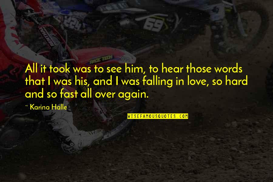 Falling For You Fast Quotes By Karina Halle: All it took was to see him, to