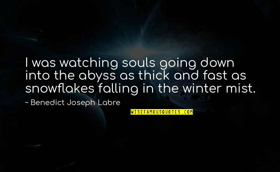 Falling For You Too Fast Quotes By Benedict Joseph Labre: I was watching souls going down into the